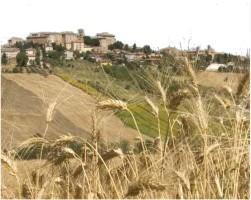 Vista di Ostra